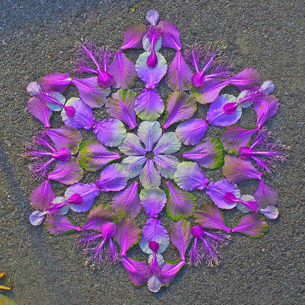 flower-mandalas-kathy-klein-8[1]